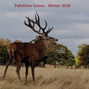 PALLOTTINE VOICES Winter 2018